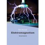 Elektromagnetism (Riina Murulaid)